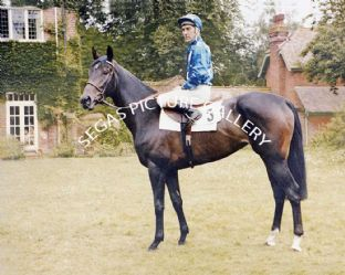 Fair Selina with Greville Starkey (662-01c)